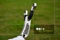 梨尘精品系列-降龙1.0精铸柄刀把反曲卡球弹弓
